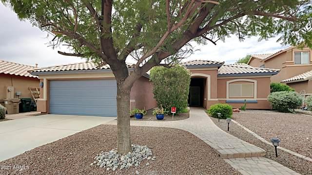 16111 W Maricopa Street, Goodyear, AZ 85338 (MLS #6272819) :: Yost Realty Group at RE/MAX Casa Grande