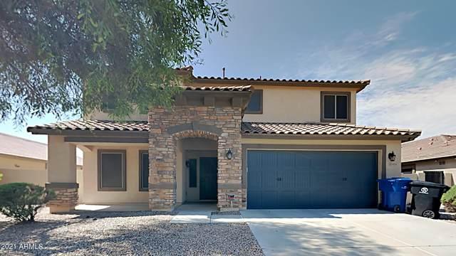 14251 W Windrose Drive, Surprise, AZ 85379 (MLS #6272823) :: The AZ Performance PLUS+ Team