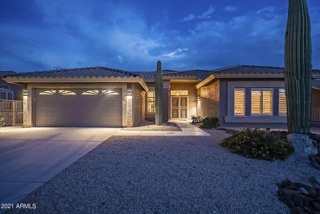9007 E Brittle Bush Road, Gold Canyon, AZ 85118 (MLS #6272826) :: Arizona 1 Real Estate Team