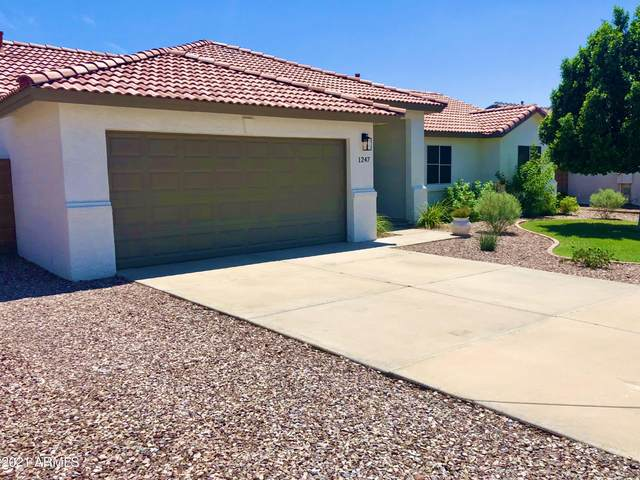 1247 S Gold Drive, Apache Junction, AZ 85120 (MLS #6272831) :: The Copa Team | The Maricopa Real Estate Company