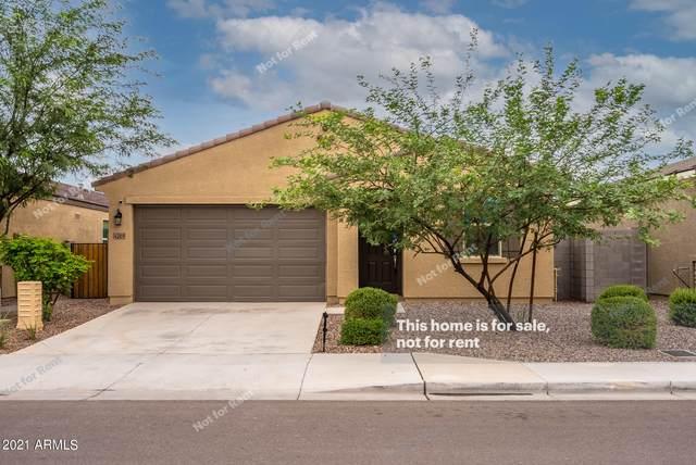 4209 S 97TH Drive, Tolleson, AZ 85353 (MLS #6272855) :: Keller Williams Realty Phoenix
