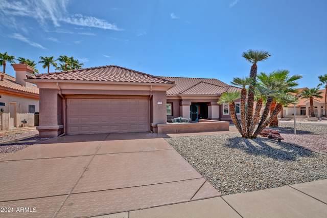 22403 N Vega Drive, Sun City West, AZ 85375 (MLS #6272881) :: The AZ Performance PLUS+ Team