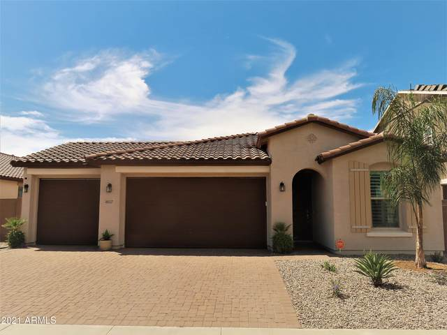 40557 W Little Drive, Maricopa, AZ 85138 (MLS #6272890) :: The Laughton Team