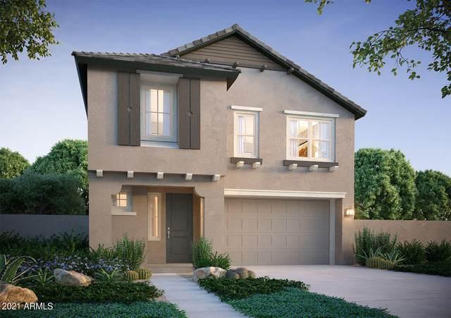 15119 W Hadley Street, Goodyear, AZ 85338 (MLS #6272893) :: Conway Real Estate