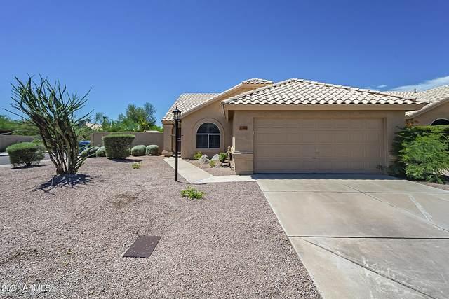 11904 N 110TH Way, Scottsdale, AZ 85259 (MLS #6272895) :: Service First Realty