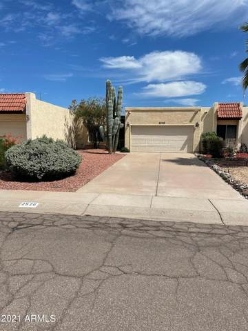 2526 E Bluefield Avenue, Phoenix, AZ 85032 (MLS #6272898) :: Conway Real Estate