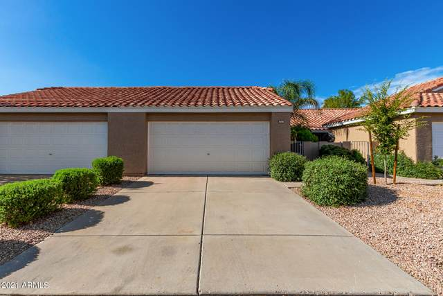 3510 E Hampton Avenue #16, Mesa, AZ 85204 (MLS #6272914) :: The Ethridge Team