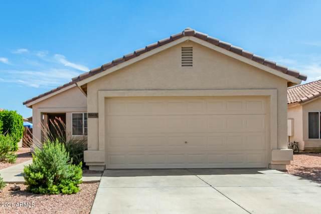 12231 W Rosewood Drive, El Mirage, AZ 85335 (MLS #6272935) :: Kepple Real Estate Group
