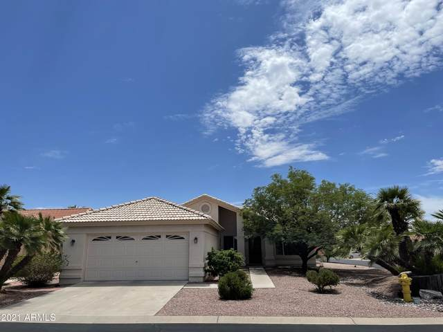 10325 E Halley Court, Sun Lakes, AZ 85248 (MLS #6272951) :: Kepple Real Estate Group