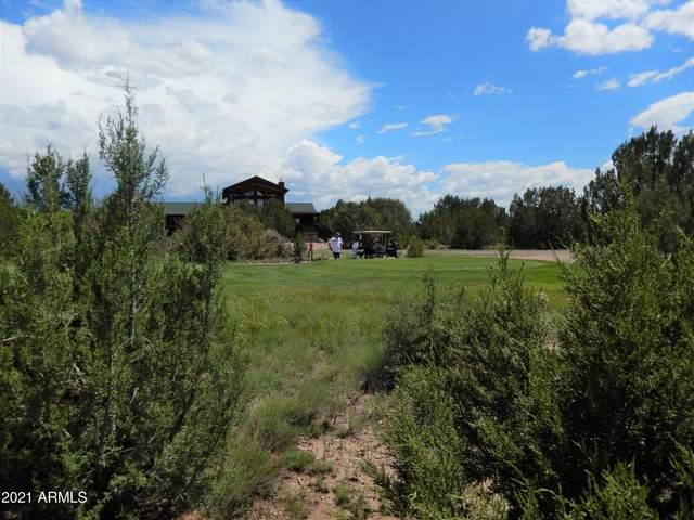 8366 Lake View Drive, Show Low, AZ 85901 (MLS #6272952) :: Kepple Real Estate Group