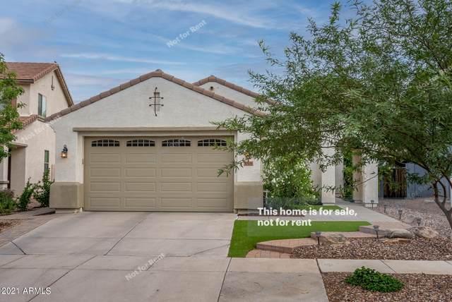 4506 E Santa Fe Lane, Gilbert, AZ 85297 (MLS #6272981) :: Yost Realty Group at RE/MAX Casa Grande