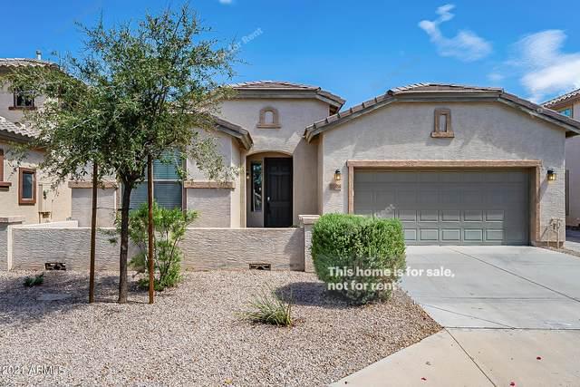 21056 E Stonecrest Drive, Queen Creek, AZ 85142 (MLS #6272994) :: Arizona 1 Real Estate Team