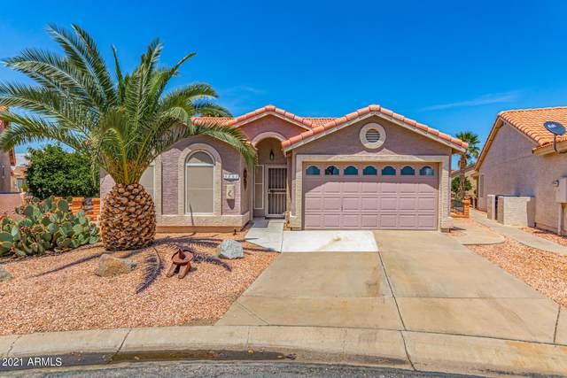 6843 S Sawgrass Court, Chandler, AZ 85249 (MLS #6273024) :: TIBBS Realty