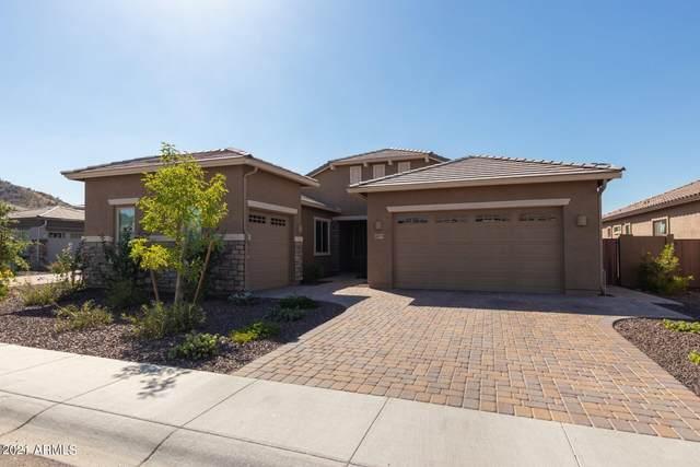 6634 W Roy Rogers Road, Phoenix, AZ 85083 (MLS #6273027) :: The Ethridge Team
