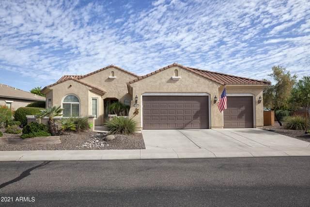 26438 W Runion Lane, Buckeye, AZ 85396 (MLS #6273028) :: The Riddle Group