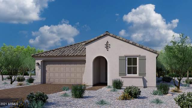 9764 E Seismic Avenue, Mesa, AZ 85212 (MLS #6273056) :: The Riddle Group