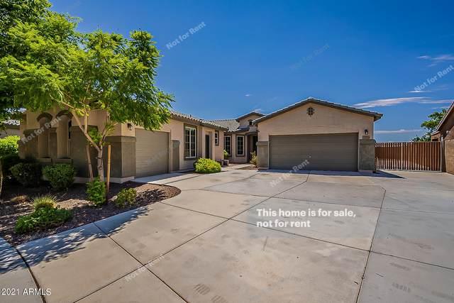 23254 N 99TH Lane, Peoria, AZ 85383 (MLS #6273059) :: The Riddle Group