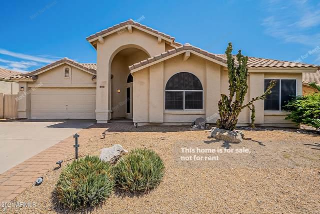 19079 N 90TH Place, Scottsdale, AZ 85255 (MLS #6273066) :: TIBBS Realty