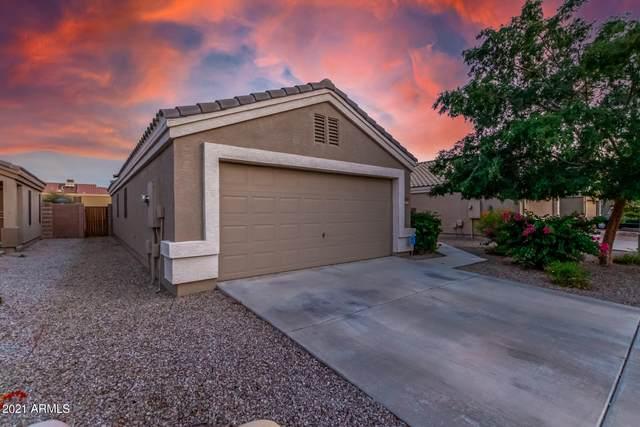 12525 W Via Camille Drive, El Mirage, AZ 85335 (MLS #6273074) :: Power Realty Group Model Home Center