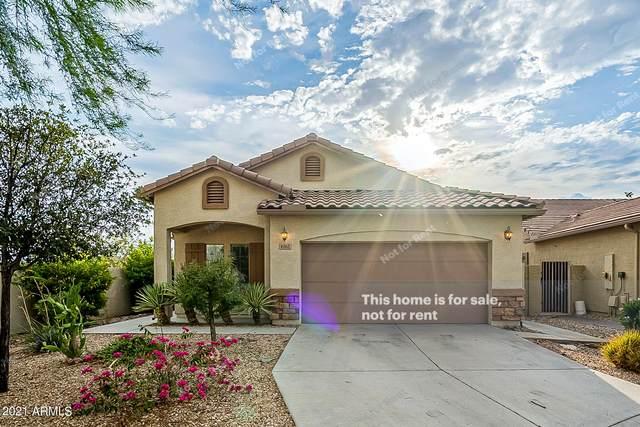 6162 S 258TH Drive, Buckeye, AZ 85326 (MLS #6273076) :: Executive Realty Advisors