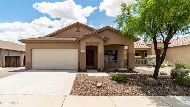 18261 E El Buho Pequeno, Gold Canyon, AZ 85118 (MLS #6273089) :: Arizona 1 Real Estate Team