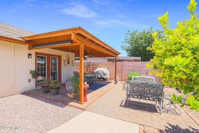 2745 E Aldine Street, Phoenix, AZ 85032 (MLS #6273090) :: The C4 Group