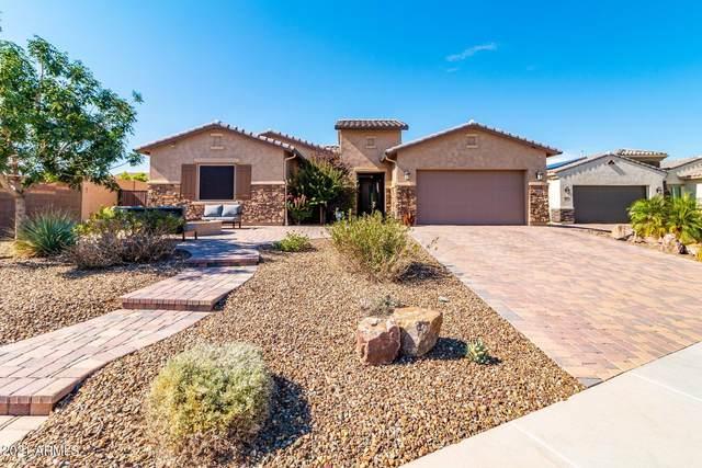 9816 W Desert Elm Lane, Peoria, AZ 85383 (MLS #6273101) :: Power Realty Group Model Home Center