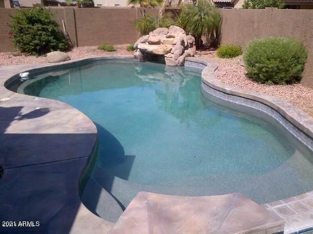 2109 S 114TH Avenue, Avondale, AZ 85323 (MLS #6273116) :: The Luna Team
