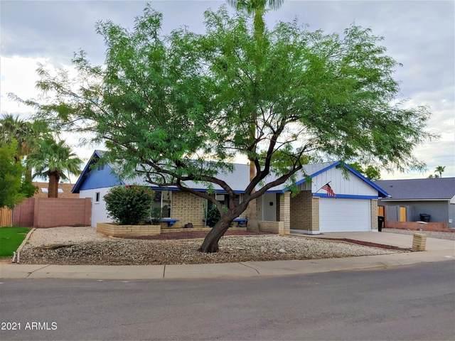 3202 N Woodburne Drive, Chandler, AZ 85224 (MLS #6273145) :: The Ellens Team