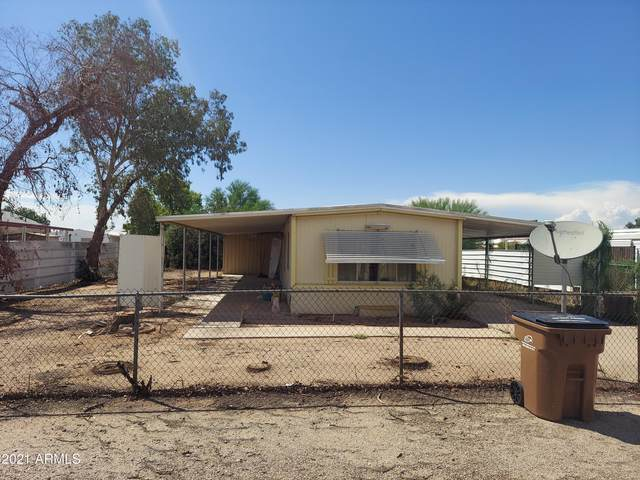1076 S 97TH Street, Mesa, AZ 85208 (MLS #6273157) :: Long Realty West Valley