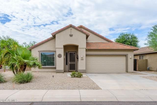 11575 W Edgemont Avenue, Avondale, AZ 85392 (MLS #6273175) :: Long Realty West Valley