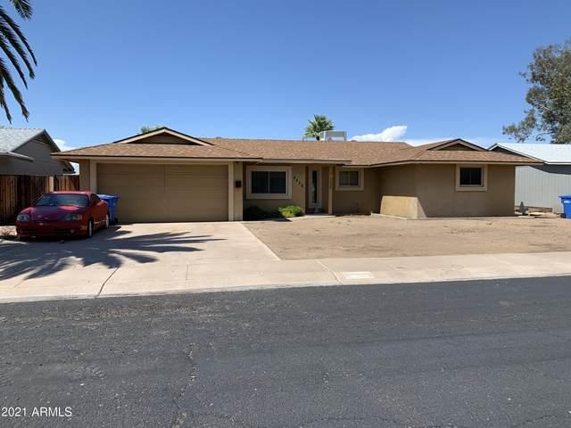 2236 E Blanche Drive, Phoenix, AZ 85022 (MLS #6273218) :: The Ellens Team