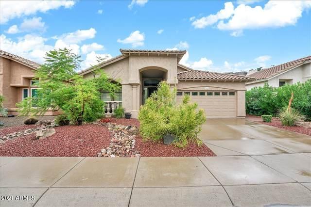 922 E Goldenrod Street, Phoenix, AZ 85048 (MLS #6273257) :: Executive Realty Advisors