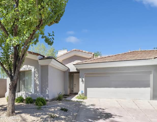 8180 E Shea Boulevard #1002, Scottsdale, AZ 85260 (MLS #6273277) :: Arizona 1 Real Estate Team