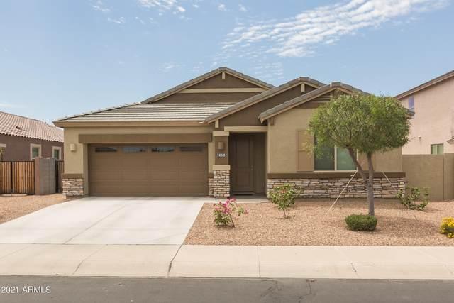 43543 W Snow Drive, Maricopa, AZ 85138 (MLS #6273306) :: Arizona 1 Real Estate Team