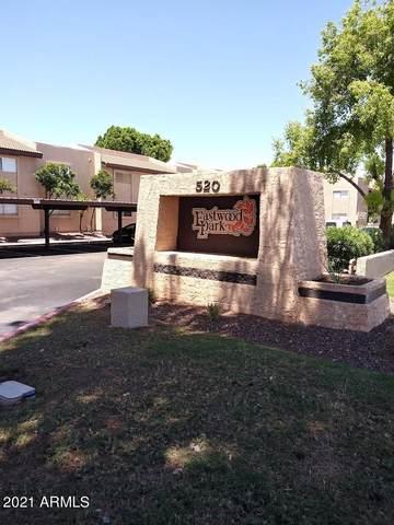 520 N Stapley Drive #291, Mesa, AZ 85203 (MLS #6273312) :: The Property Partners at eXp Realty