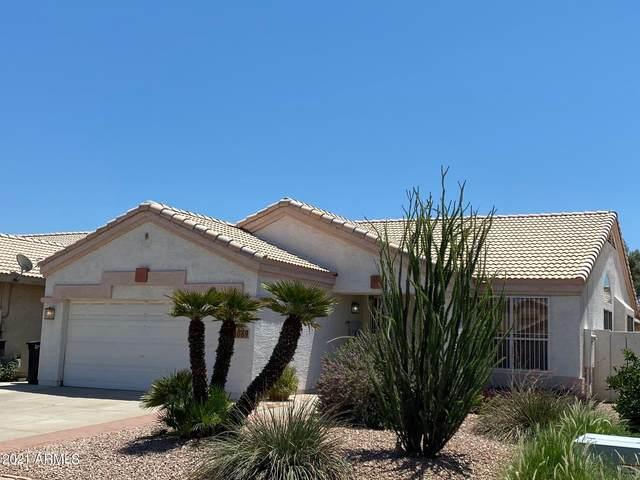 1089 W Elgin Street, Chandler, AZ 85224 (MLS #6273371) :: Executive Realty Advisors