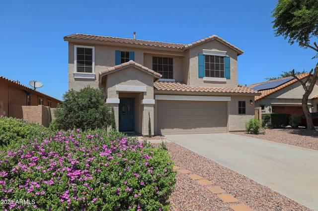 600 E Harvest Road, San Tan Valley, AZ 85140 (MLS #6273391) :: The AZ Performance PLUS+ Team