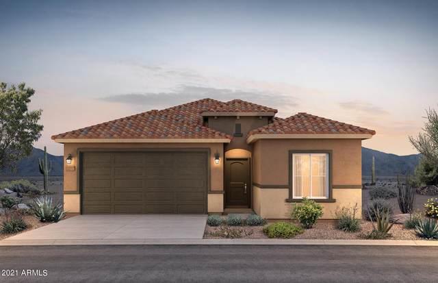 43681 W Acacia Avenue, Maricopa, AZ 85138 (MLS #6273400) :: Arizona 1 Real Estate Team