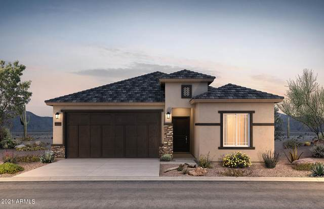 43669 W Acacia Avenue, Maricopa, AZ 85138 (MLS #6273402) :: Arizona 1 Real Estate Team
