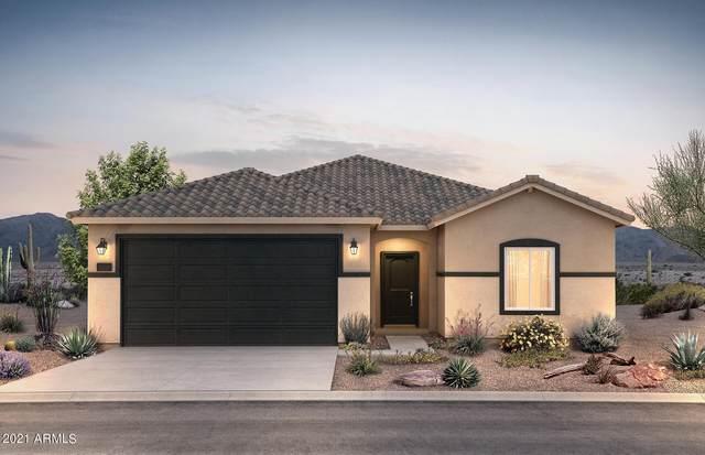 43743 W Mescal Street, Maricopa, AZ 85138 (MLS #6273404) :: Arizona 1 Real Estate Team