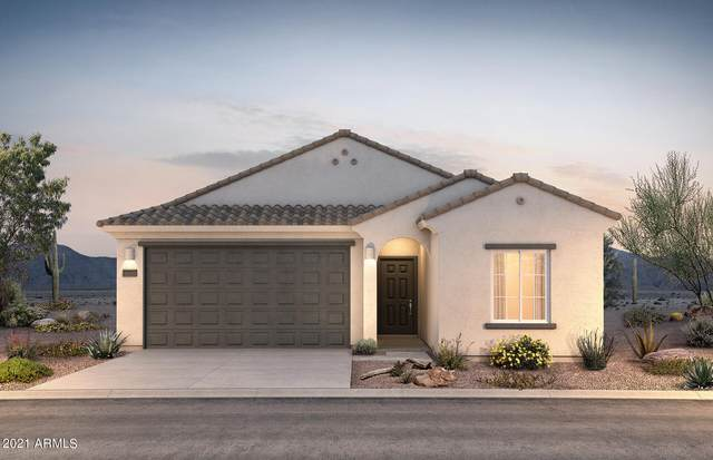 43710 W Buckhorn Trail, Maricopa, AZ 85138 (MLS #6273405) :: Arizona 1 Real Estate Team
