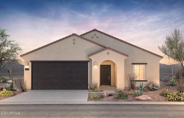 43816 W Mescal Street, Maricopa, AZ 85138 (MLS #6273412) :: Arizona 1 Real Estate Team