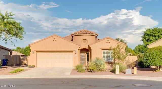 4713 S Dante, Mesa, AZ 85212 (MLS #6273422) :: Arizona 1 Real Estate Team
