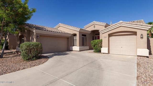 3650 S Tower Avenue, Chandler, AZ 85286 (MLS #6273439) :: Walters Realty Group