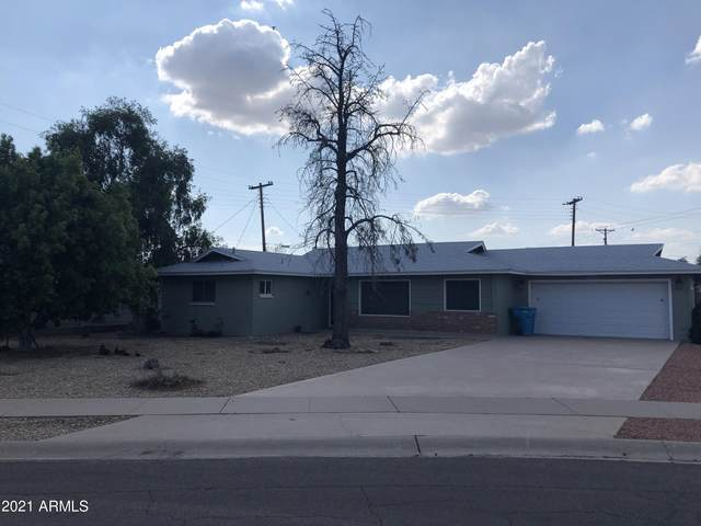 7238 N 20 Avenue, Phoenix, AZ 85021 (MLS #6273504) :: Arizona 1 Real Estate Team