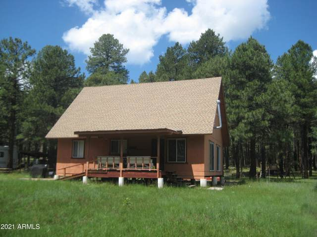 5348 Forest Service 701 Road, Happy Jack, AZ 86024 (MLS #6273506) :: Arizona 1 Real Estate Team