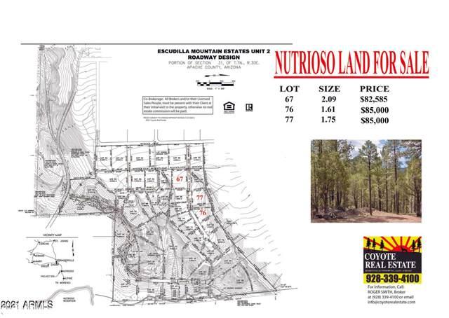 23 County Road 2223 Road, Nutrioso, AZ 85932 (MLS #6273514) :: Fred Delgado Real Estate Group