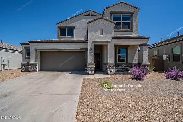 31018 W Earll Drive, Buckeye, AZ 85396 (MLS #6273534) :: Power Realty Group Model Home Center