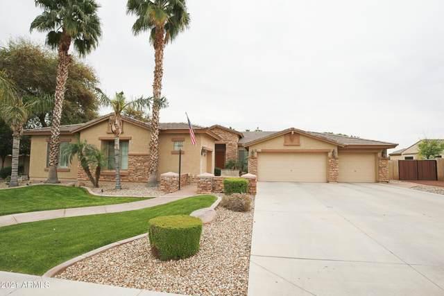 13209 W Denton Court, Litchfield Park, AZ 85340 (MLS #6273579) :: Yost Realty Group at RE/MAX Casa Grande